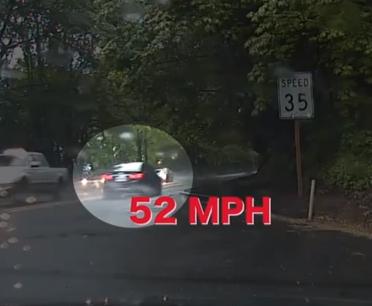 カモの親子に助けられたスピード違反のドライバー