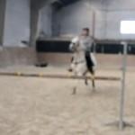 ジャンプを拒む馬