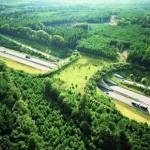 野生動物用の歩道橋