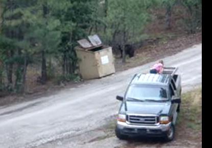 ゴミ箱から出られなくなった3子熊のナイスな救出