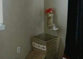 洗濯物を投げるとカゴから飛び出しキャッチしてくれる猫