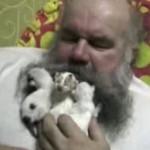 おじさんの髭に猫の赤ちゃん