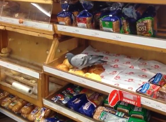 パン売り場に現れた困ったお客さん