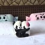 パンダ好きにはたまらない?パンダがテーマになったホテル