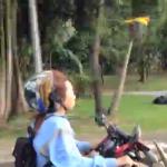 バイクと並んで飛ぶ鳥