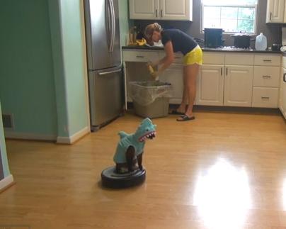 キッチンの掃除を手伝うサメ猫