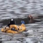 凍る川に落ちたワンコの救出