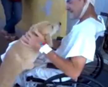 入院していた飼い主と8日ぶりに再会するワンコ