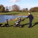 ゴルファーを激しく威嚇するブラックスワン