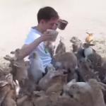 ウサギにもみくちゃにされながら餌やりをする男性