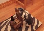 ビールを運んでくれるウサギ