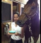 馬にロウソク付きの誕生日ケーキを差し出した時の反応