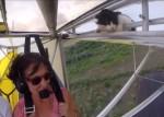 フライト前の点検は万全だったのにニャンコが軽飛行機に搭乗していた!