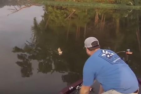 釣り人が川を泳いでいた2匹の猫を救出