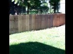 ワンコが脱走しないように高い柵を設置した結果