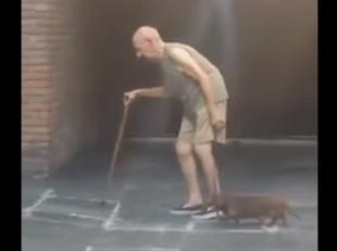 お年寄りの速度に合わせて散歩するワンコ