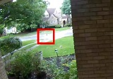 雷の音に驚き飛び跳ねるリスを監視カメラが撮影